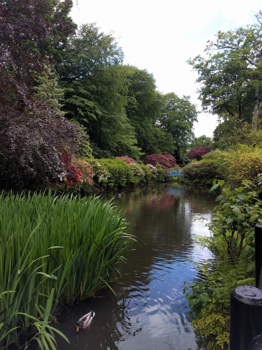 Johnston Gardens, Aberdeen - Emma's Picture Postcards